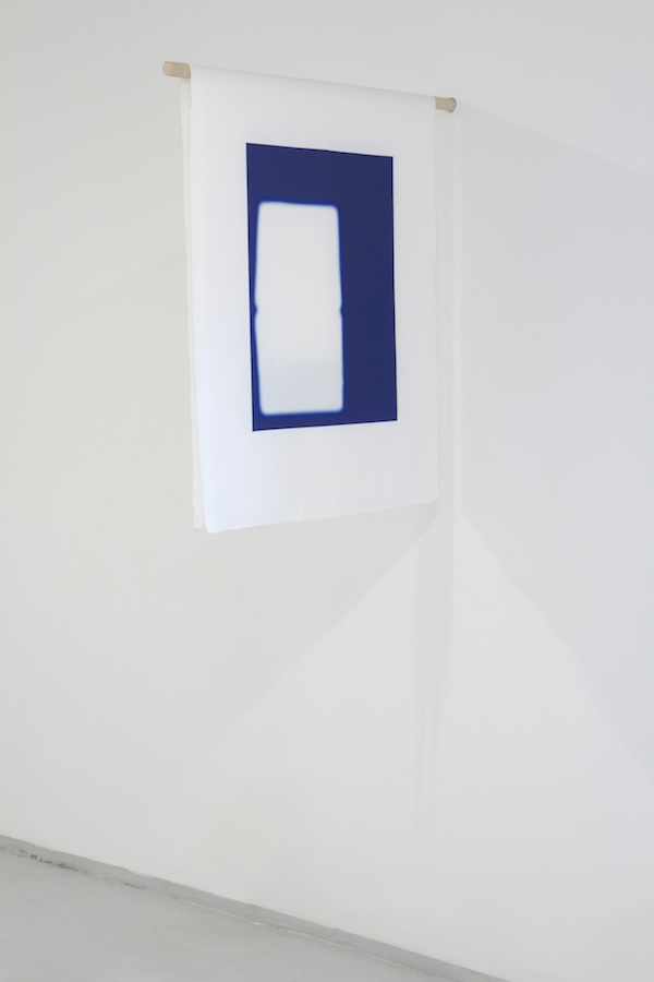 tania-perez-cordova-things-above-the-ground-things-below-the-ground-silkscreen-on-polyester-2011