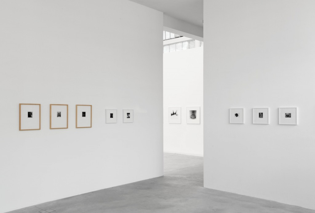 <em>Installation view</em>, 2013, Galleria Franco Noero, Torino